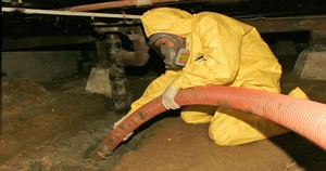 Mold Removal Technician In Crawlspace