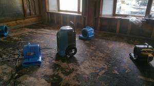 Mold Damage Restoration In Progress
