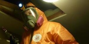 Mold Removal Technician Cleaning Up Infestation